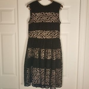 Maggy London size 12 fun dress!